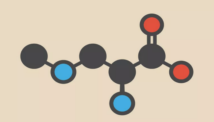 11 nhóm chức phổ biến nhất trong hóa học hữu cơ